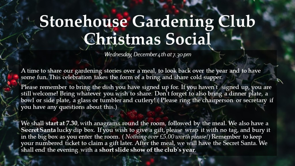 Christmas Social  Wednesday, December 4th at 7.30 pm Giving us time to share our gardening stories over a meal, to look back over the year and to have some fun. This Celebration takes the form of a bring and share cold supper, so please remember to bring the dish you have signed up for. If you haven't  signed up, you are still welcome, so bring whatever you wish to share. Don't forget to also bring a dinner plate, a bowl or side plate, a glass or tumbler and cutlery! ( Please ring the chairperson or secretary if you have any questions about this.) We shall start the event at 7.30, with anagrams round the room, followed by the meal. We also have a Secret Santa lucky dip box. If you wish to give a gift, please wrap it with no tag, and bury it in the big box as you enter the room. ( Nothing over £5.00 worth please.) Remember to keep your numbered ticket to claim a gift later. After the meal, we will have the Secret Santa. We shall end the evening with a short slide show of the club's year.